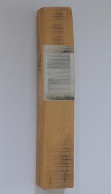 Horizontaal versneden boek ingewerkt in stuk balk, 2006 - P.1.2.06 by Denmark
