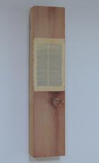Horizontaal versneden boek ingewerkt in stuk plank (wijnhout), 2007 - P.12.09.07 by Denmark