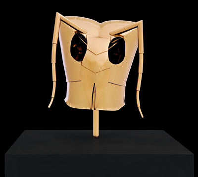 Vespula Vulgaris (Helm voor Marina) by Fabre Jan