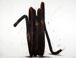Indeterminate Line by Venet Bernar