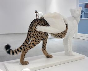 Cheetah C.C.P. by Vanmechelen Koen