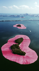 Christo and Jeanne-Claude Surrounded Islands, Biscany Bay,  Greater Miami, Florida, 1983 by Volz Wolfgang