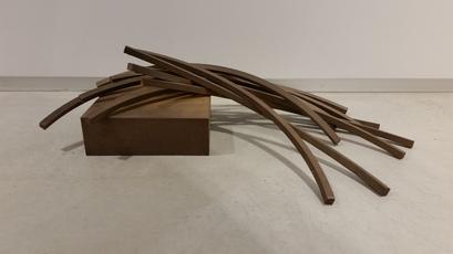 Arcs in Disorder: 85.5° Arc x 11 by Venet Bernar
