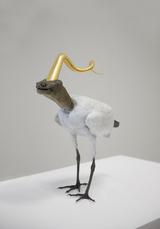 Golden Cord Ibis with turtle head by Vanmechelen Koen