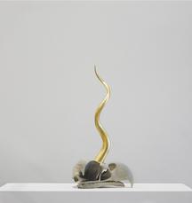 Golden Cord Stellar Eagle Beak by Vanmechelen Koen