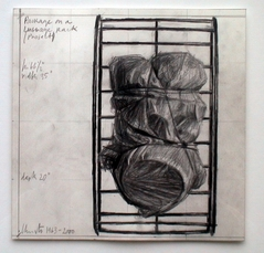 Package on a Luggage Rack (project) by Christo