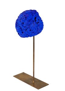 Eponge bleue  by Klein Yves