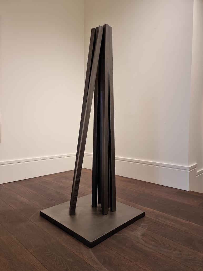 9 lignes obliques by Venet Bernar