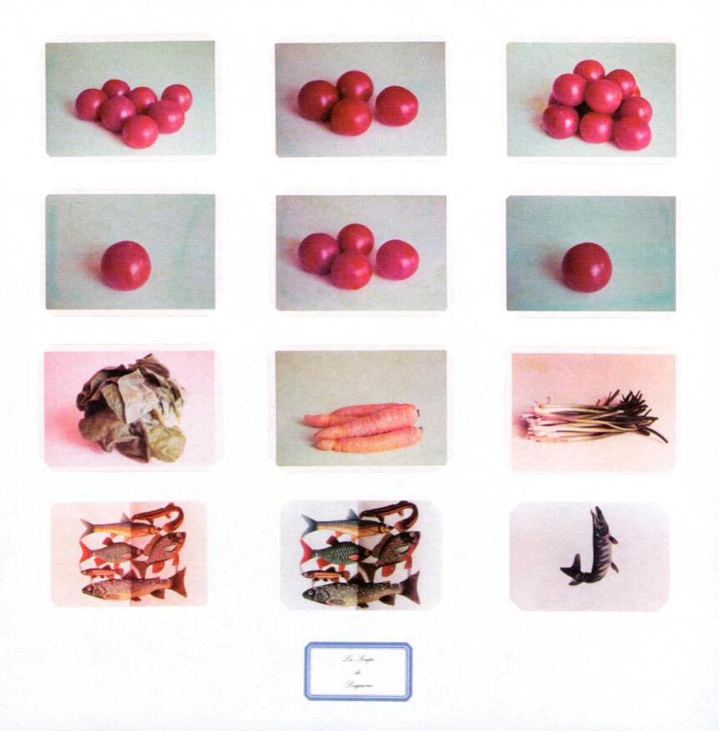 La collection complète by Broodthaers Marcel