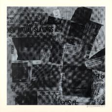 Surface Series by Rauschenberg Robert